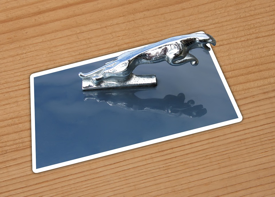 Car, Jaguar, Card, Chrome, Hood, Ornament, Reflection