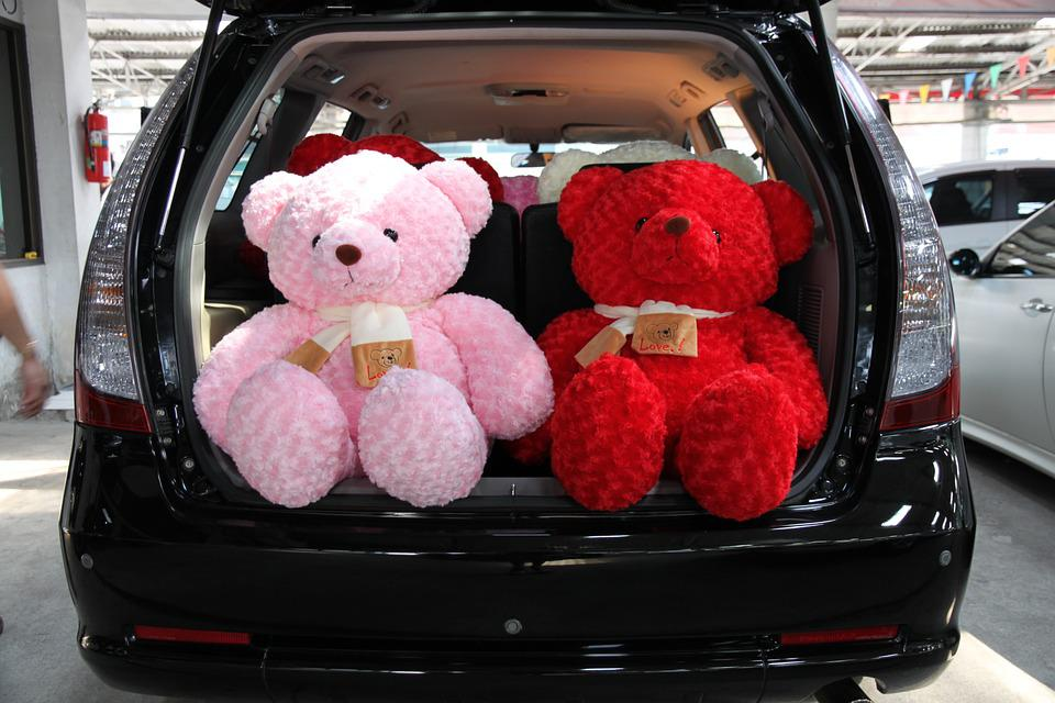 Car, Teddy, Space Wagon