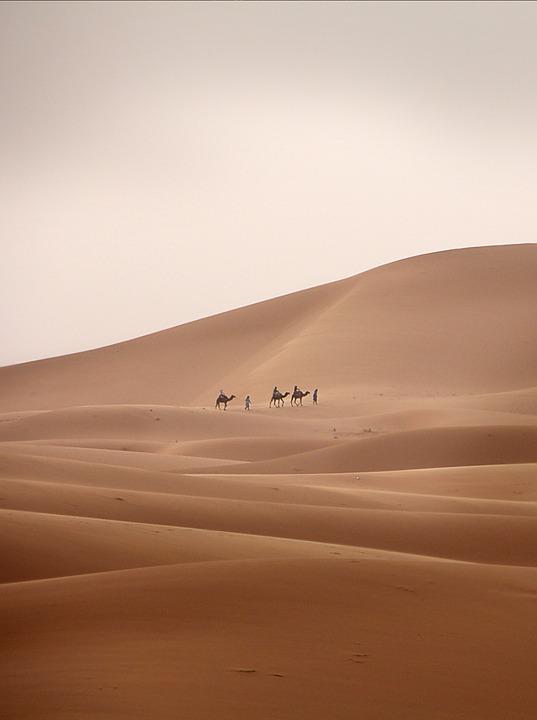 Desert, Caravan, Camel, Dromedary, Sand, Desert Ship