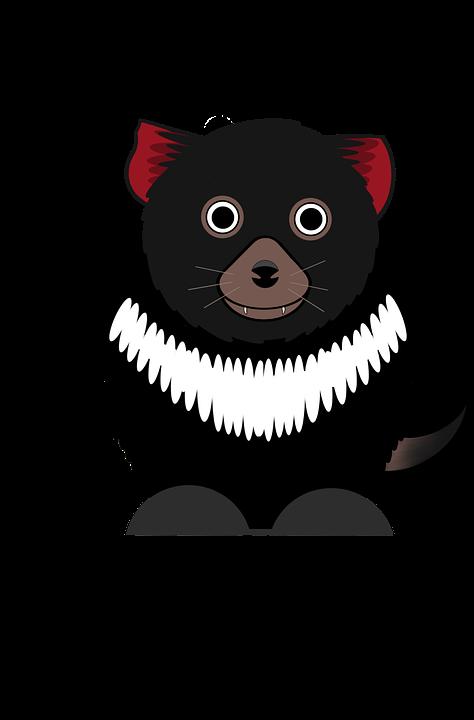 Tasmanian Devil, Animal, Wildlife, Carnivore, Mammal