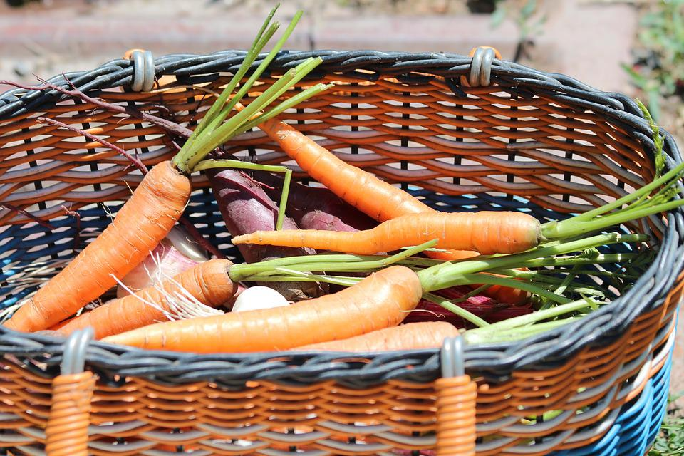 Carrot, Basket, Harvest, Vegetables, Nutrition, Orange