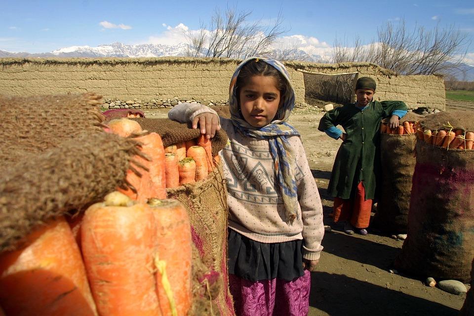 Afghanistan, Children, Carrots, Crop, Fields, Sky