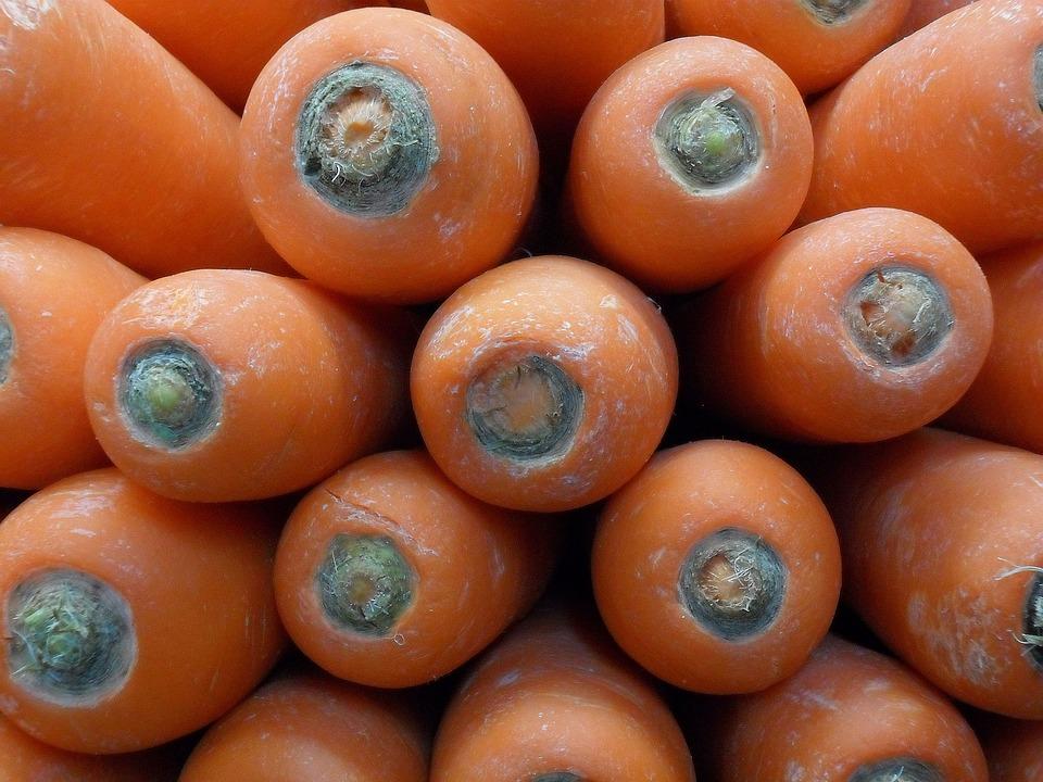 Carrots, Vegetable, Fresh, Food, Garden, Healthy