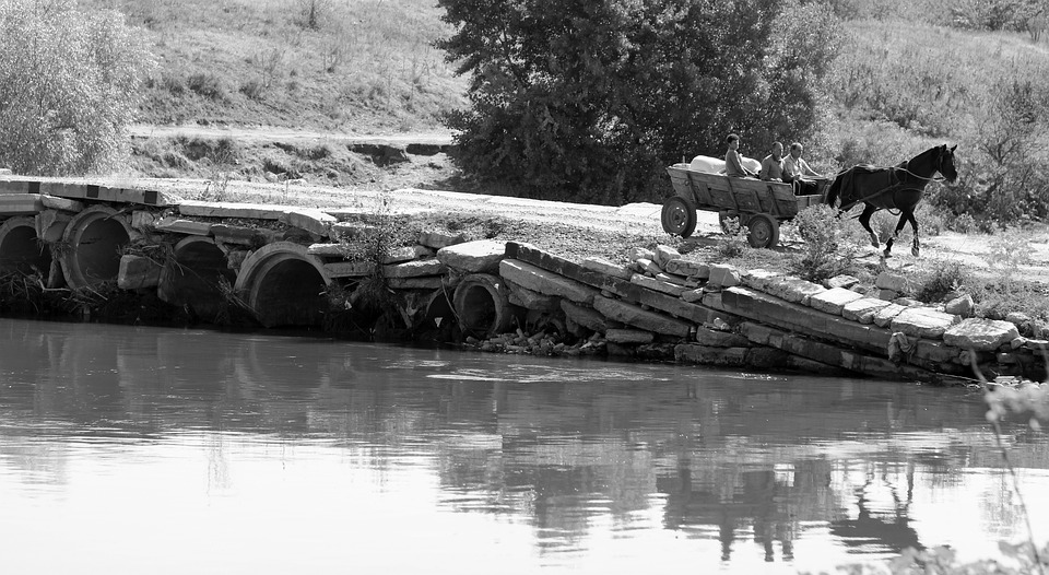 Cart, Bridge, Reflection, Water, Rural, Horse