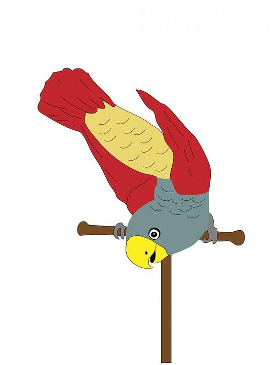 Parrot, Bird, Animal, Pet, Cute, Cartoon, Art, Colorful