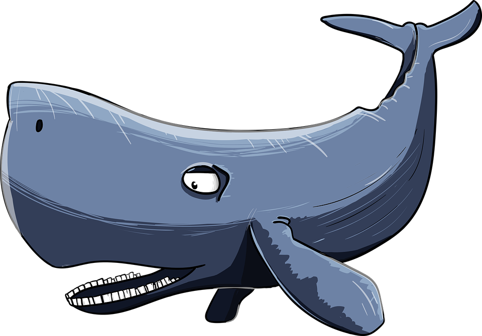 Sperm Whale, Kit, Cartoon, Floaters, Sea Giant