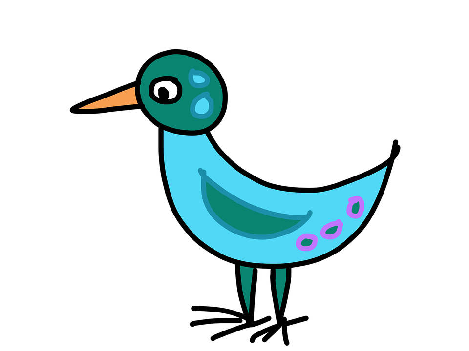 Bird, Turquoise, Cartoon, Fantasy, Colorful