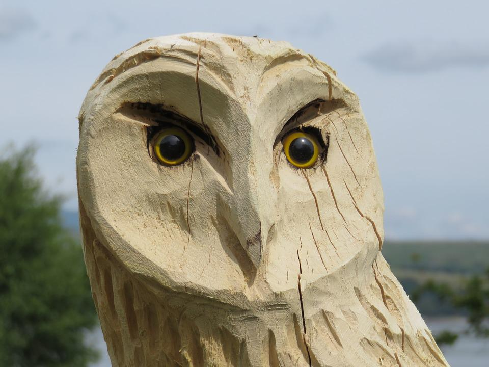 Carved Owl, Wise, Wood, Owl, Carving, Wisdom, Nature