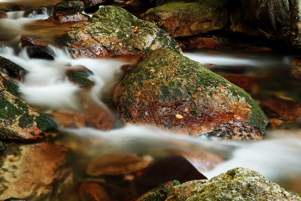 Blur, Blurred, Cascade, Fall, Flow, Flowing, Forest