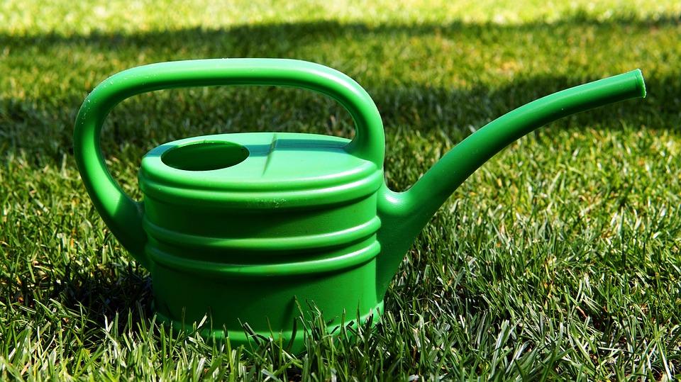 Garden, Casting, Watering Can, Rush, Water, Gardening