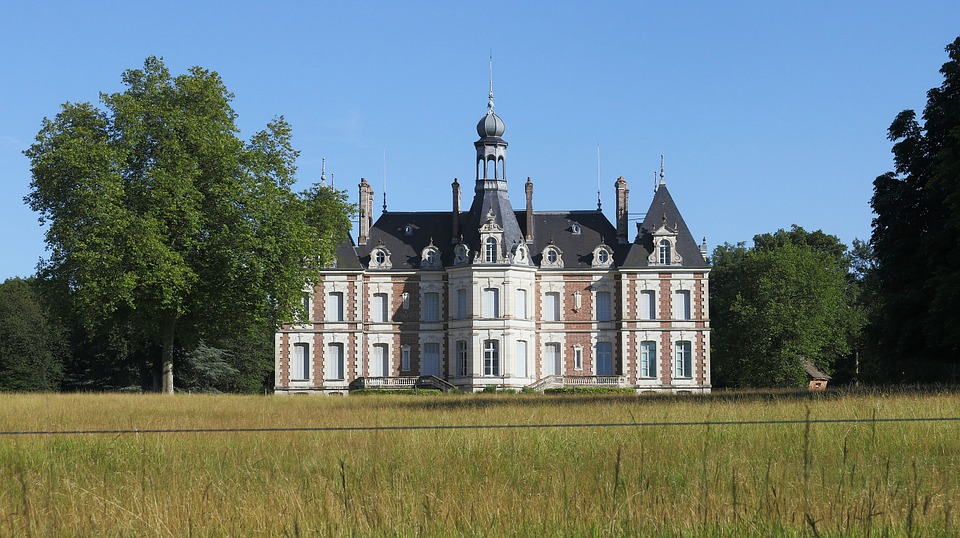 Castle, Housing, Country Of The Loire, Tree, France