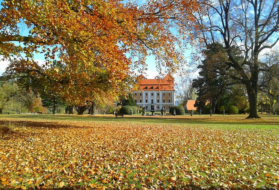 Park, Castle, Czechia, Chateau, Trees, Fall, Season