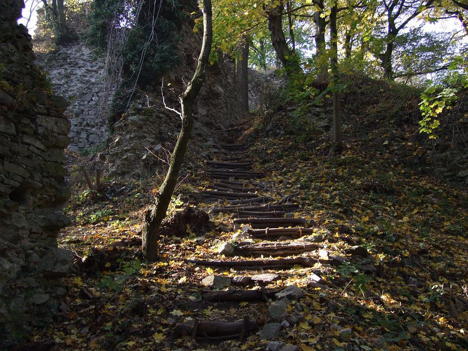 Slovakia, Forest, Sunlight, Stairs, Castle, Ruins