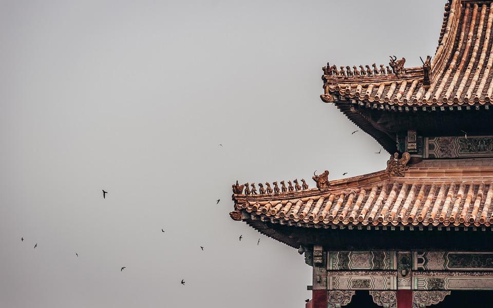 Kingdom, Palace, Birds, Castle, Architecture, Royal