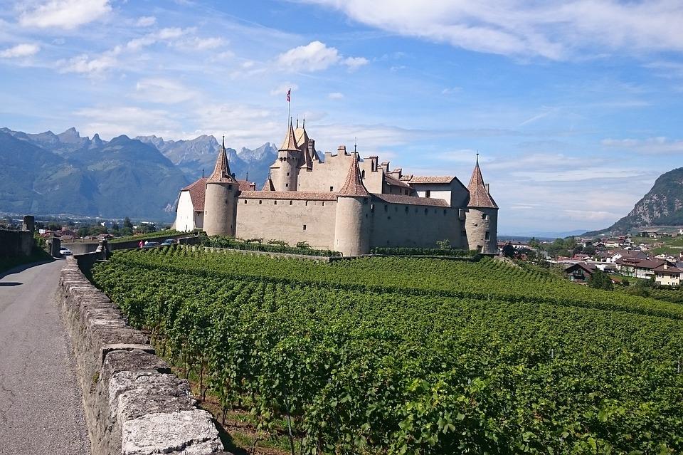 Eagle, Castle, Rampart, Path, Vine, Vineyard, Grape