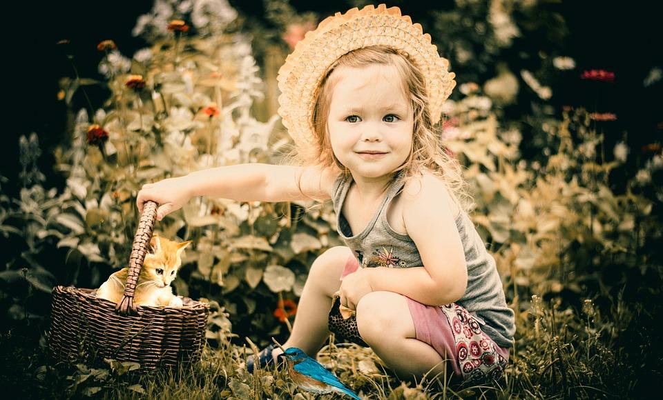Baby, Kids, Cat, Bird Child, Photographing Children