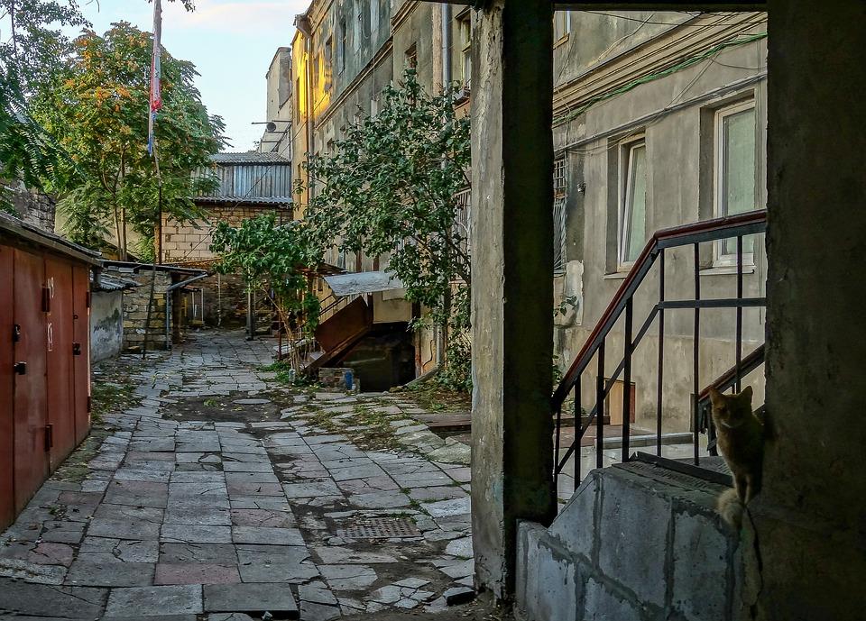 Odessa Yard, Cat, Railing, Post, Garage