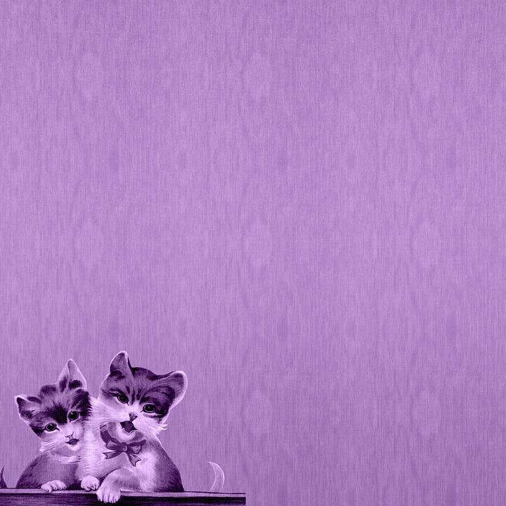 Purple Digital Paper, Vintage Cats, Kitten, Cat Vintage