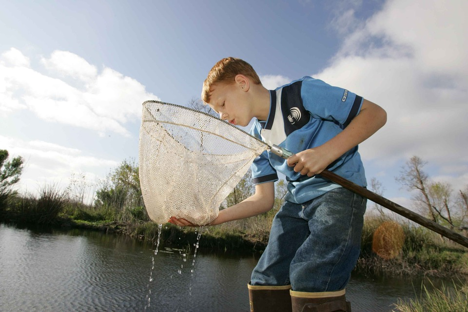 Fish, Catches, Boy, Young, Hunting, Fishing, Sport