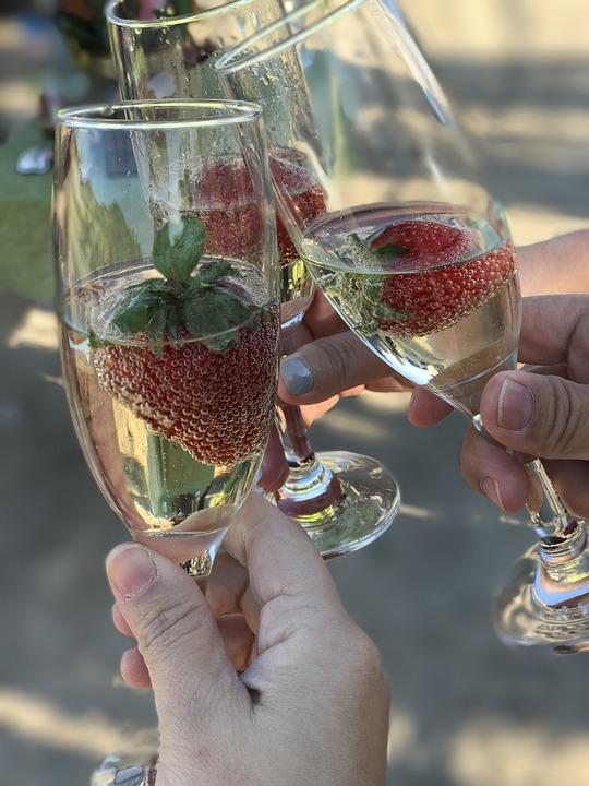 Wine, Travel, Celebrate