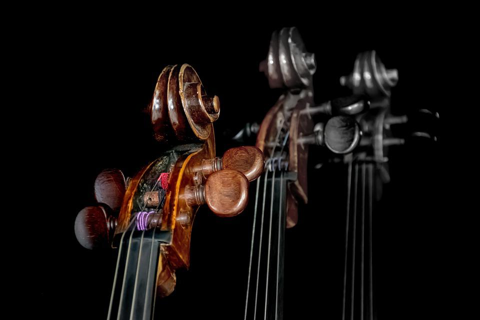 Cello, Head, Neck, Curl, String, Concert, Instruments