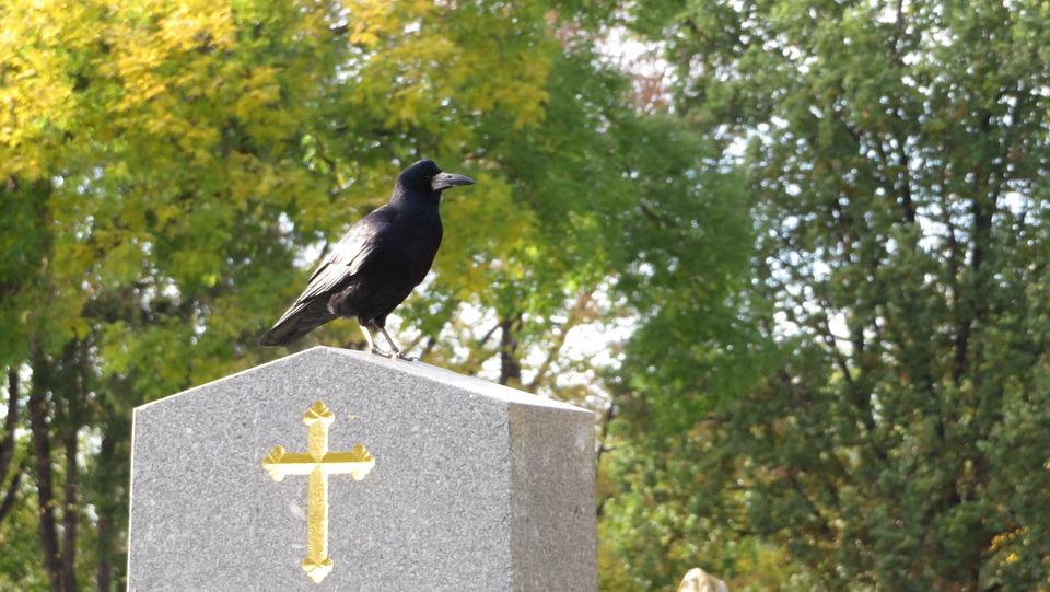 Grave, Cross, Crow, Cemetery, Stone, Black