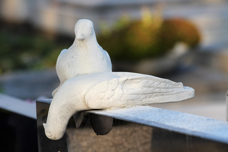 White Doves, Monument, Cemetery, Gravestone, Outdoor