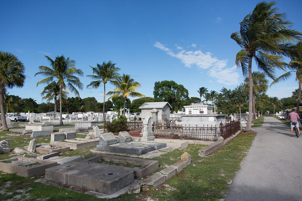 Cemetery, Key West, Florida, Palm Trees, Graveyard