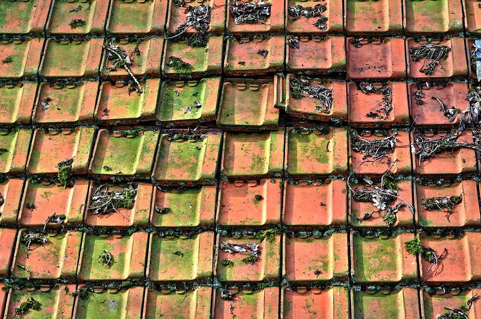 Roof, Tiles, Tiled Roof, Roof Tiles, Ceramic