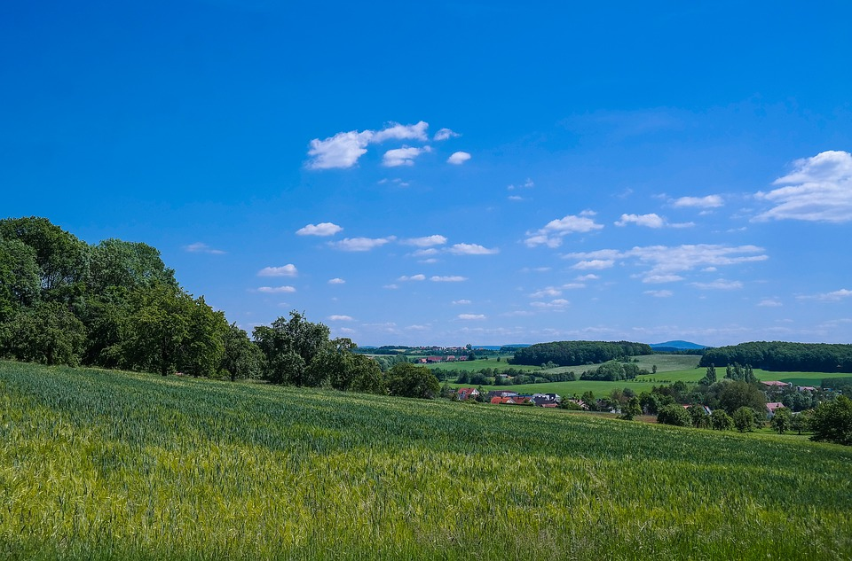 Landscape, Fields, Cereals, Panorama, Nature