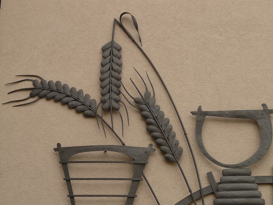 Grain, Ear, Cereals, Wheat, Mural, Metal, Image, Bauer