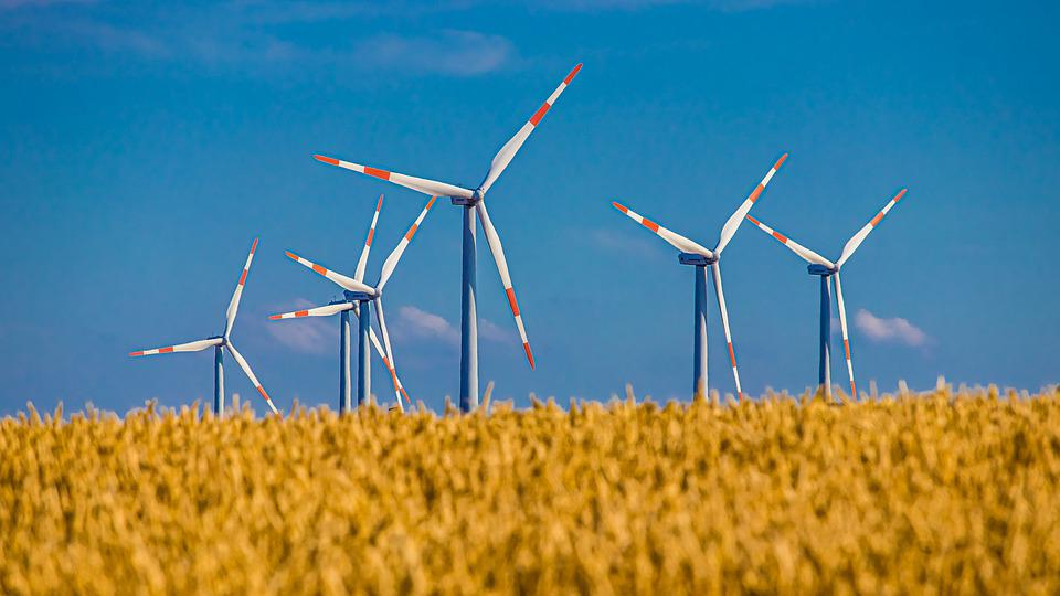 Pinwheel, Field, Cereals, Sky, Wind Energy, Wind Power