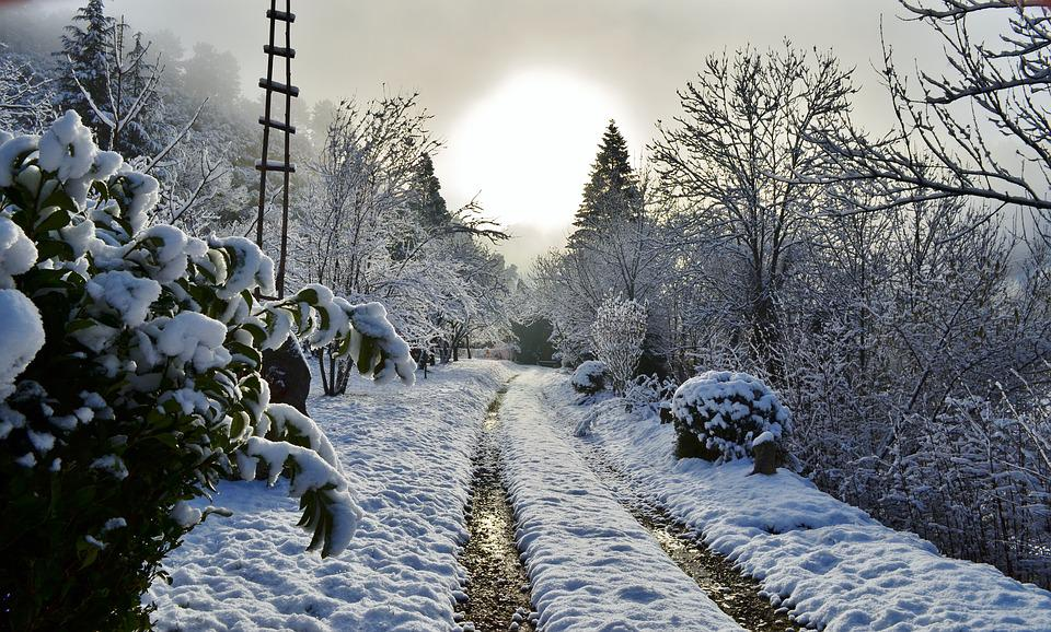 Path, Snow, Cévennes, Sun, Winter