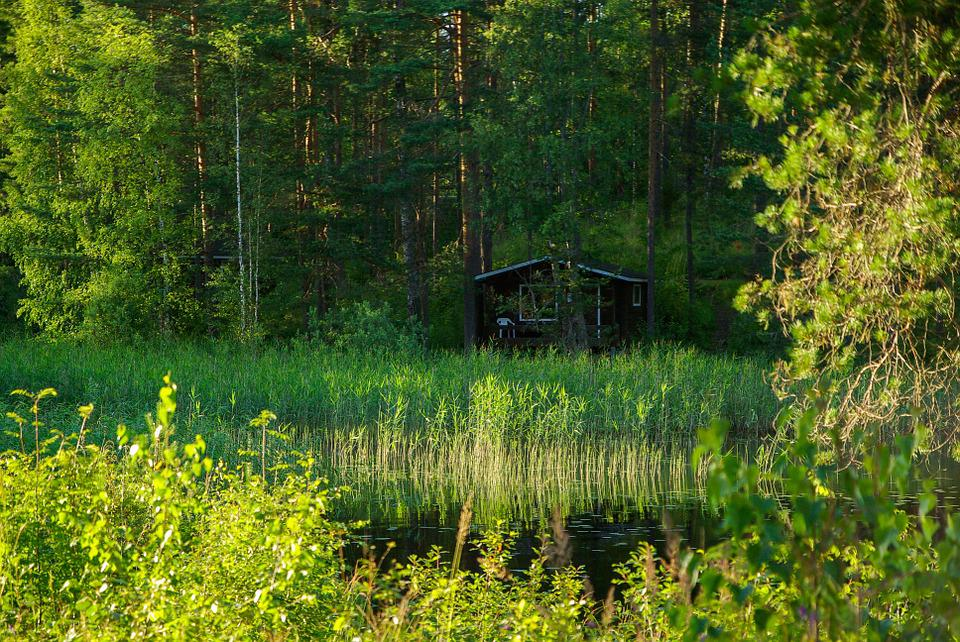 Finland, Lake, Reeds, Forest, Chalet