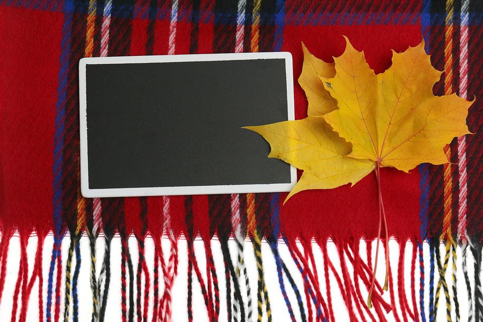 Autumn, Maple, Sheet, Plate, Chalk Sign, Black, Scarf