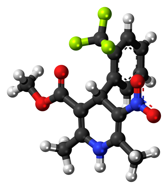Bay K8644, Molecule, Model, Calcium, Channel, Agonist