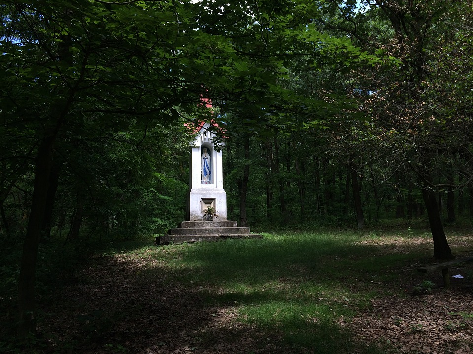 Chapel, Forest, Shadow, Mystery, Nature, God, White