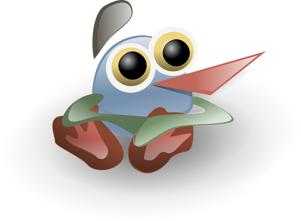 Bird, Cartoon, Character