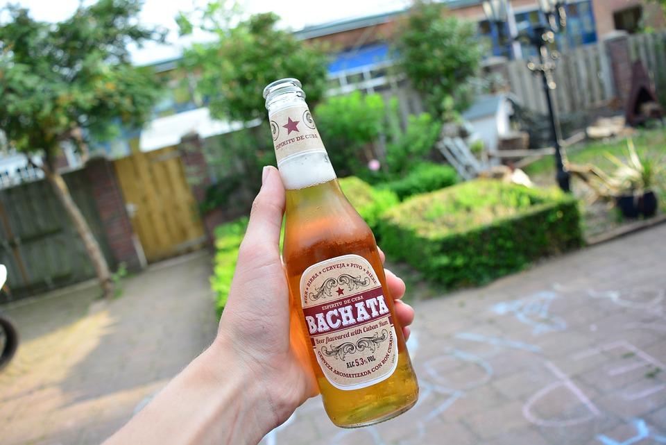 Beer, Drink, Cold, Beverage, Bottle, Cheers, Hand