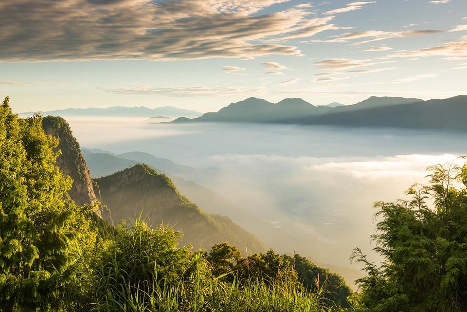 Taiwan, Alishan, A Surname, Mist, Mountain, Chenguang