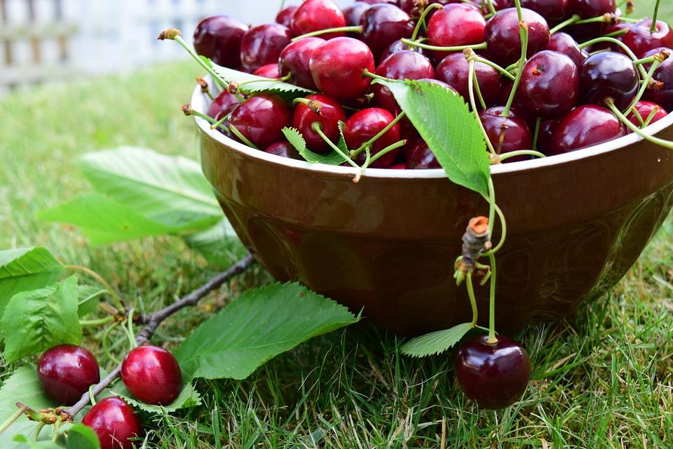 Cherries, Bowl, Fruit, Delicious, Red, Sweet, Food