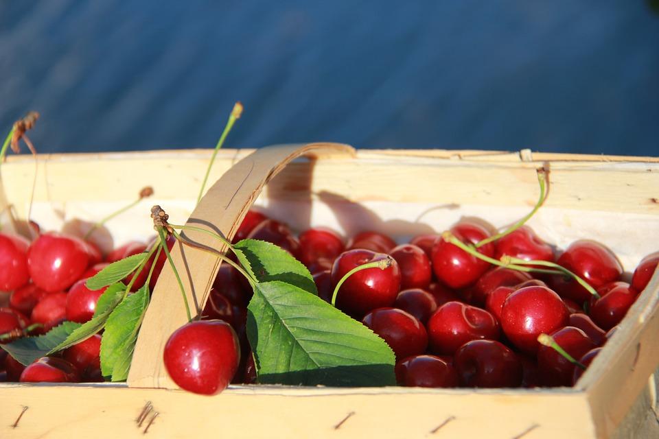 Cherries, Cherry Basket, Fruit, Delicious