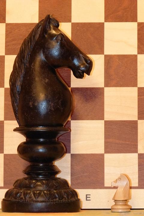 Springer, Chess, Chess Piece, Horse, Rössl, Chess Board