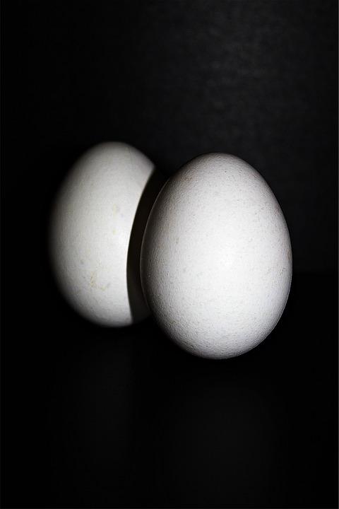Chicken Eggs, Egg, Hen's Egg, Food, Oval, Egg Shells