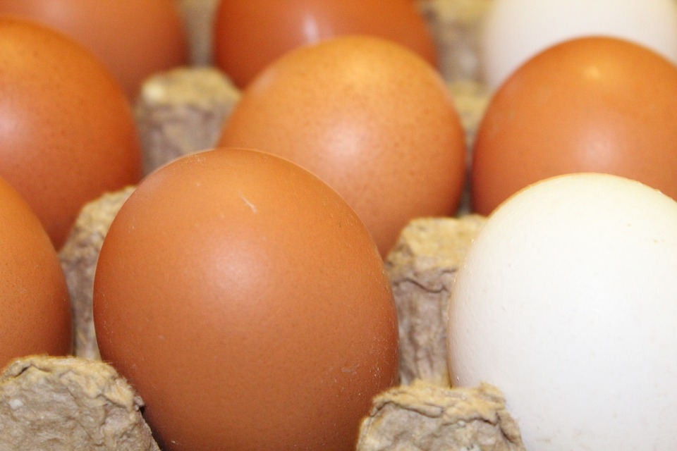 Eggs, Chicken, Egg, Food, Nutrition, Easter, There Are