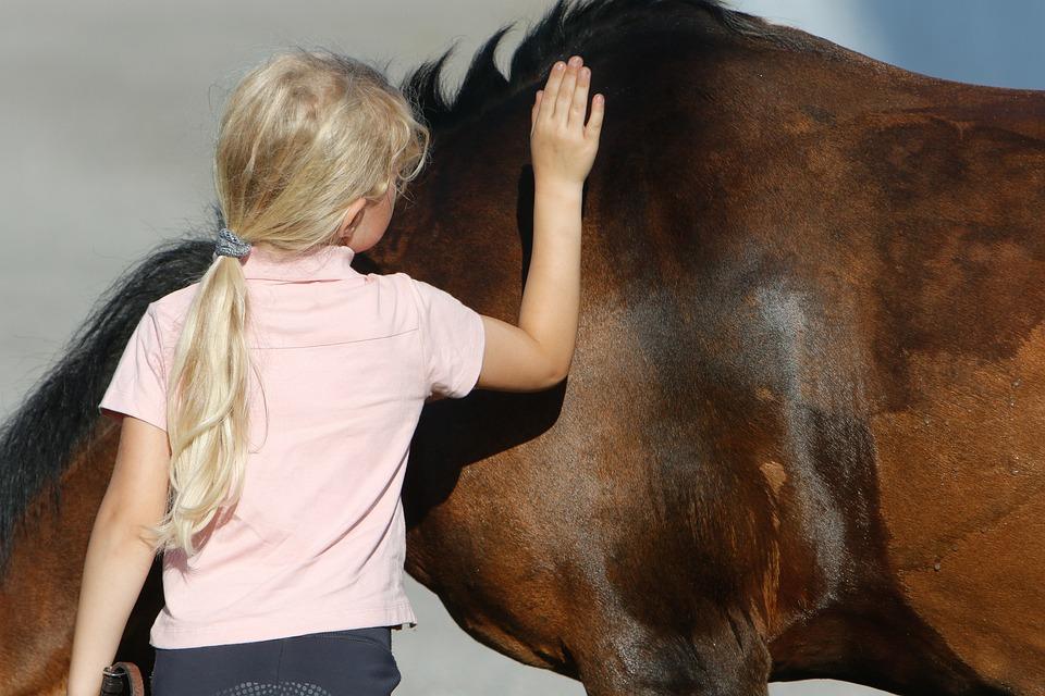Horse, Pony, Kid, Child, Friendship, Animal, Pet, Girl
