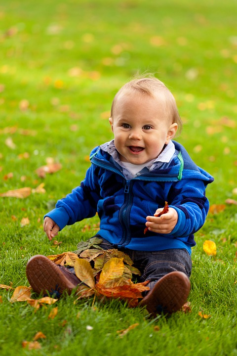 Autumn, Baby, Boy, Cheerful, Child, Cute, Fall, Fun