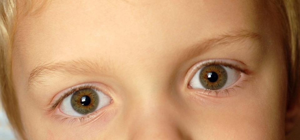 Eyes, Child, Boy, Brown