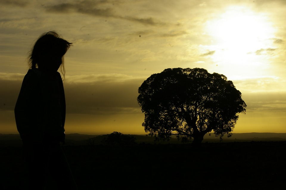Girl, Child, Sunset, Tree, Creativity, Silhouette