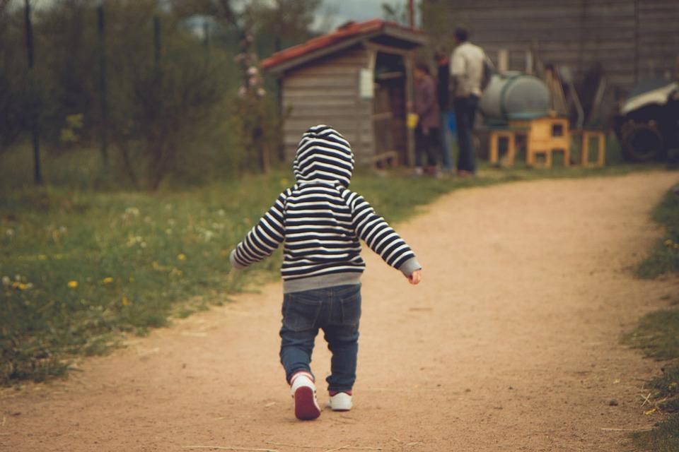 Child, Infant, Kid, Walking, Baby, Happy, Little